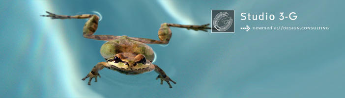 Photo of Frog in Pool Copyright (c) 2012 Ryan Belong, All rights reserved